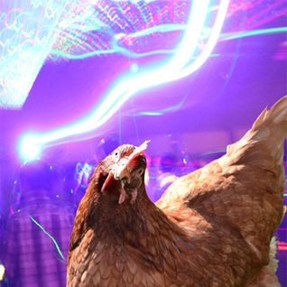 ~=THE CHICKEN RAVE=~