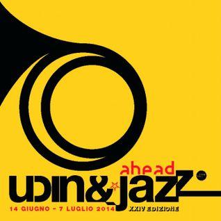 Udin&Jazz 2014