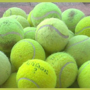Roe Green Tennis Club's Steve Mannion on Wimbledon & British Tennis Funding