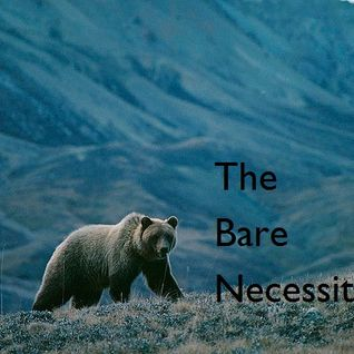 The Bare Necessities