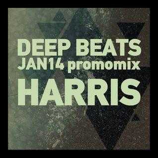 DEEP BEATS Promo Mix Jan14 - HARRIS(GR)