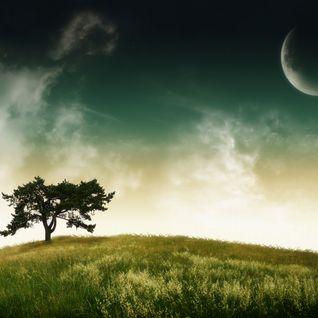 Pursuit of Serenity Vol. 2