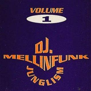 DJ Mellinfunk Junglism