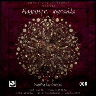 Magnutze - Ingravida (Lee Jokes Remix)