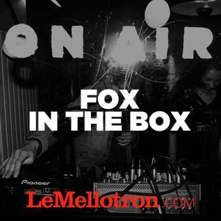 Fox In The Box • Open-Platines • LeMellotron.com