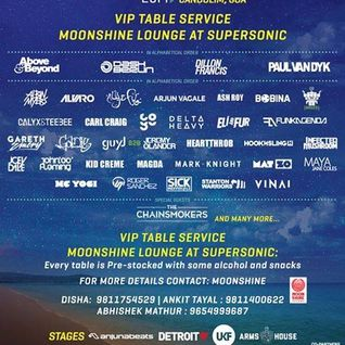 Albin Myers - live at VH1 Supersonic, Goa, Day 4 - 30-Dec-2014