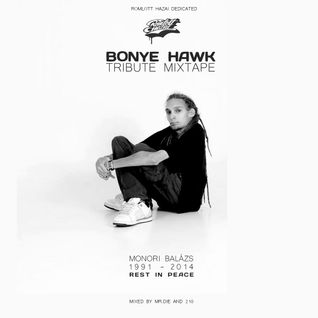 BONYE HAWK Tribute Mixtape // Mixed by Mr.Die and 210