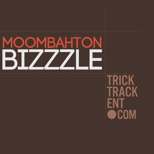 Moombahton Mix -- Bizzzle