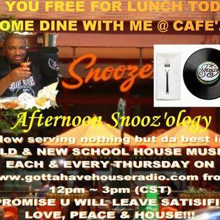 4.25.2013 Afternoon Snooz'ology Show Part 2 @ Gottahavehouseradio Chicago