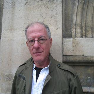 Penser l'islamisme - Pascal ORY, Paul BERMAN