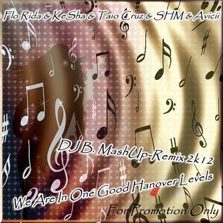Flo Rida & KeSha & Taio Cruz & SHM & Avicii - We Are In One Good Hangover Levels ( DJ B. MashUp-Remi
