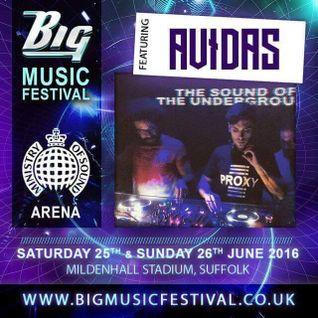 Avidas - Big Music Festival Promo Mix