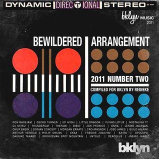 Bewildered Arrangement | No. 2