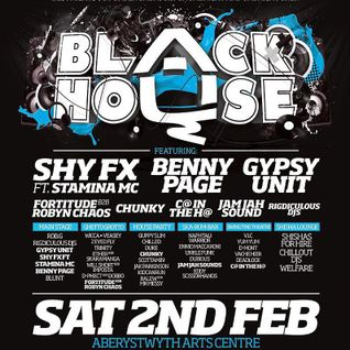 BLACKHOUSE 2/2/13 Scottamin House party stage.