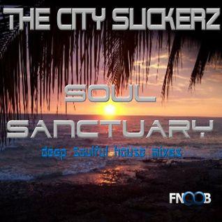 Soul Sanctuary 001