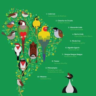 A Guide to the Birdsong of South America Mixtape