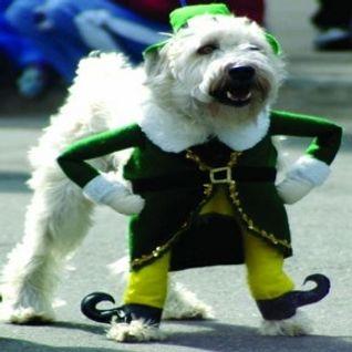 Dubstep Mix-St. Patrick's Day 3-17-2012
