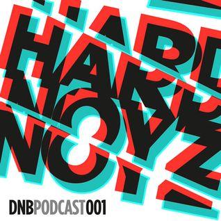 Hardnoyz DNB Podcast 001