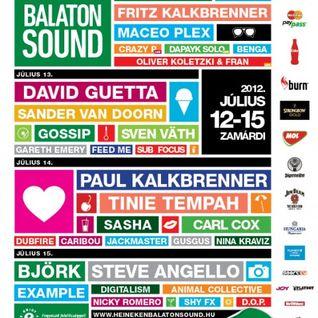 Fritz Kalkbrenner - Live @ Balaton Sound Festival, Hungary (12-0-7-2012)