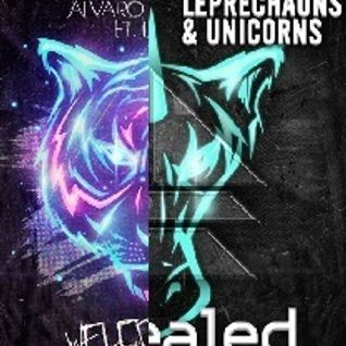 Alvaro & MERCER vs. Dyro - Welcome To The Leprechauns & Unicorns (Hardwell Mashup) (BakaYuka Reboot)
