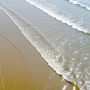 Muzzamix VII - On Tides