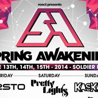 Dillon Francis - Live @ Spring Awakening Music Festival 2014 (Chicago) - 15.06.2014