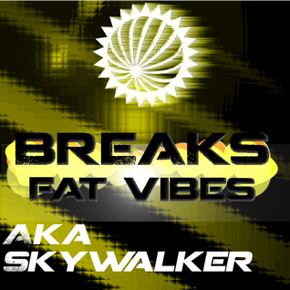 Aka-SkyWalker - Breaking The Rabbit (Breaks)