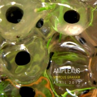 Marcus Graham - Amplexus - April 2012