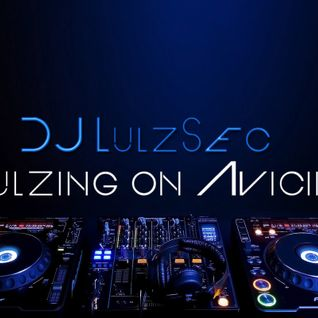 DJ LulzSec - Lulzing on Avicii (Set Mix)