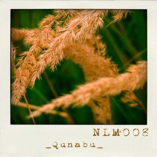 [NLM008] Netlabel-Mix Vol.8 - Qunabu