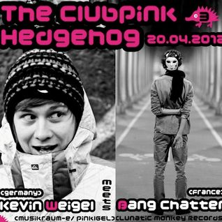 003 The Clubpink Hedgehog- Kevin Weigel meets Bang Chatter (France)