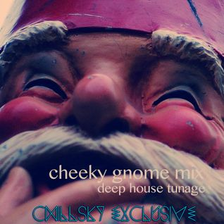 The Cheeky Gnome Mix (deep house)