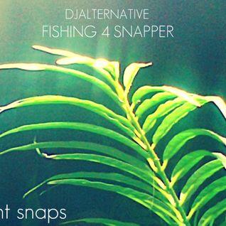 Fishing 4 Snapper : Saint Snapper