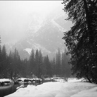 Winter Demo 2010