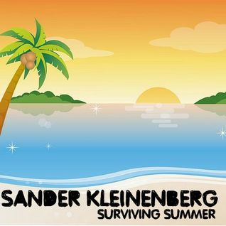 Sander Kleinenberg / SURVIVING SUMMER 2014