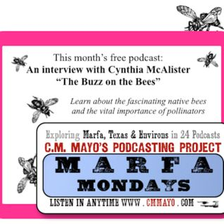 Marfa Mondays 5: Cynthia McAlister: The Buzz on the Bees