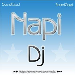 Dj_Napi-_-Madness Special_-_(2011)