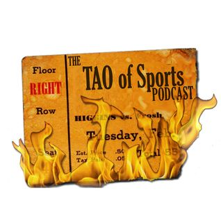 Tao of Sports Ep. 312 - Mike Feder (Professional Baseball Marketer)