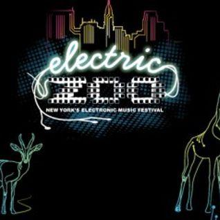 Bingo Players - live at electric zoo (new york city) 09,01,2012
