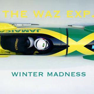 THE WAZ EXP. - Winter Madness