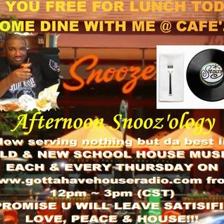 4.25.2013 Afternoon Snooz'ology Show part 1 @ Gottahavehouseradio Chicago