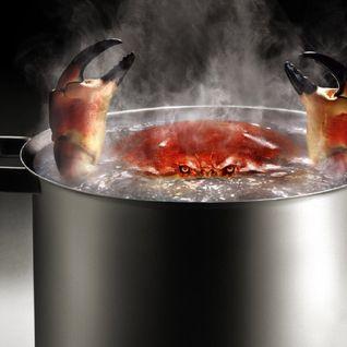 Boiled speaker