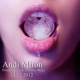 Andi Miron - Frozen Sounds (Promo Mix) (December 2012)