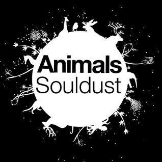 Souldust for Animals Club on FM BRussels Radio Show