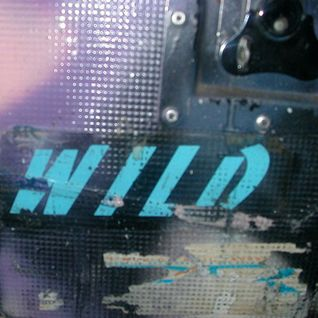 DJ W!LD : W!LDWORLD MIX 8