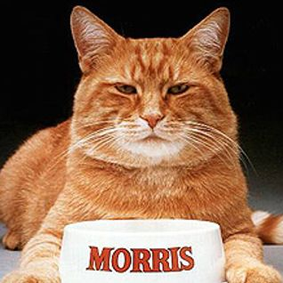 Mixmaster Morris @ Release the Ear pt2