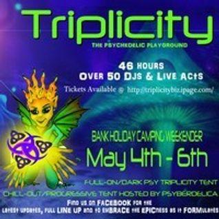 Omega Flight DJ set @ Triplicity 4h May 2013