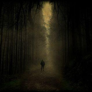 Deep Forest Sounds