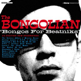 Bongos For Beatniks!!!