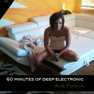 ave fuqua _ 60 minutes of deep electronic no 29